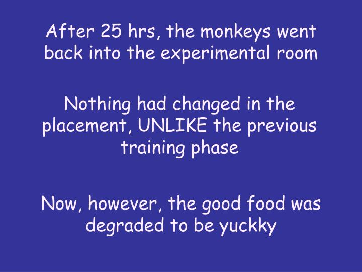 After 25 hrs, the monkeys went back into the experimental room
