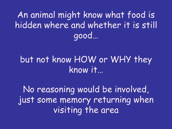 An animal might know what food is hidden where and whether it is still good