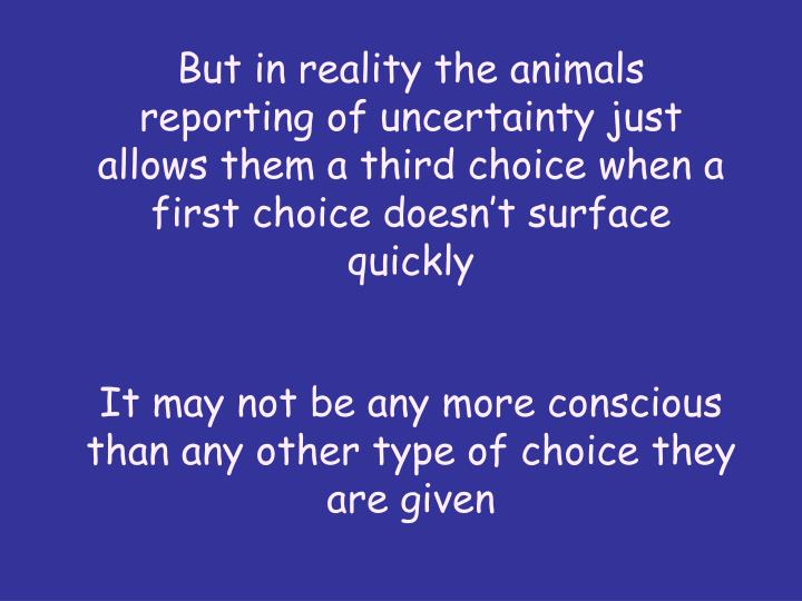 But in reality the animals reporting of uncertainty just allows them a third choice when a first choice doesnt surface quickly
