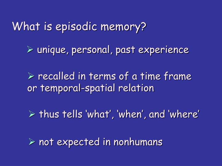 What is episodic memory?