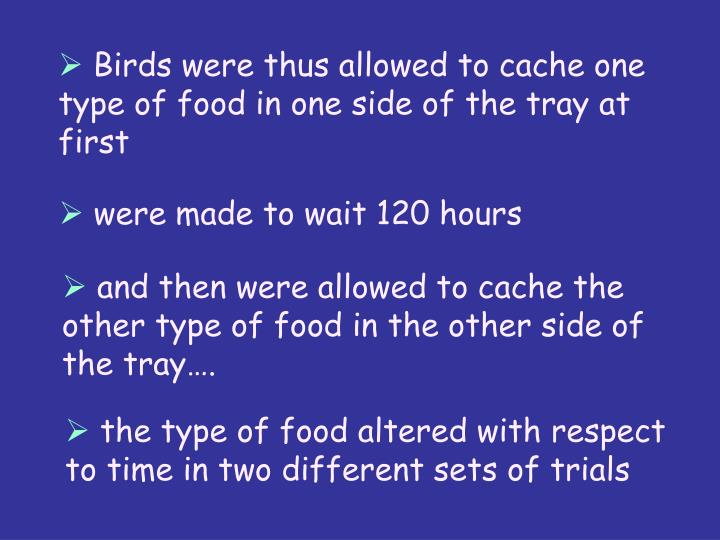 Birds were thus allowed to cache one type of food in one side of the tray at first