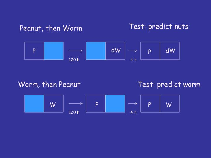 Test: predict nuts