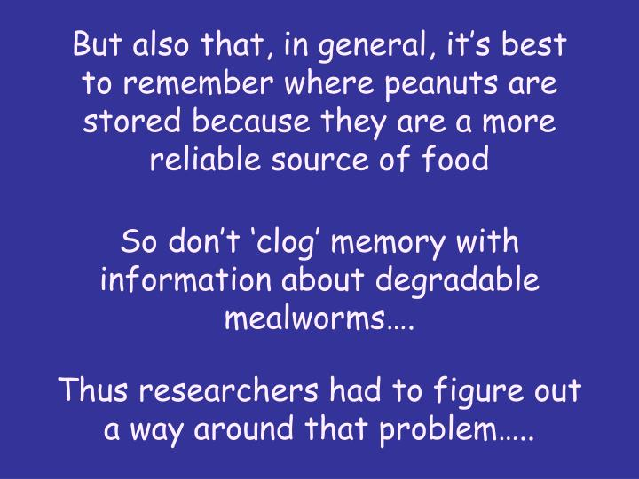 But also that, in general, its best to remember where peanuts are stored because they are a more reliable source of food