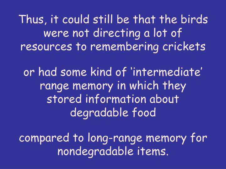 Thus, it could still be that the birds were not directing a lot of resources to remembering crickets