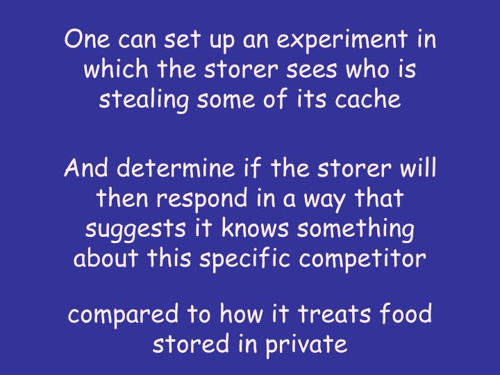 One can set up an experiment in which the storer sees who is stealing some of its cache