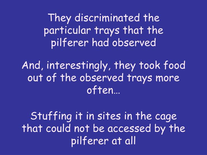 They discriminated the particular trays that the pilferer had observed