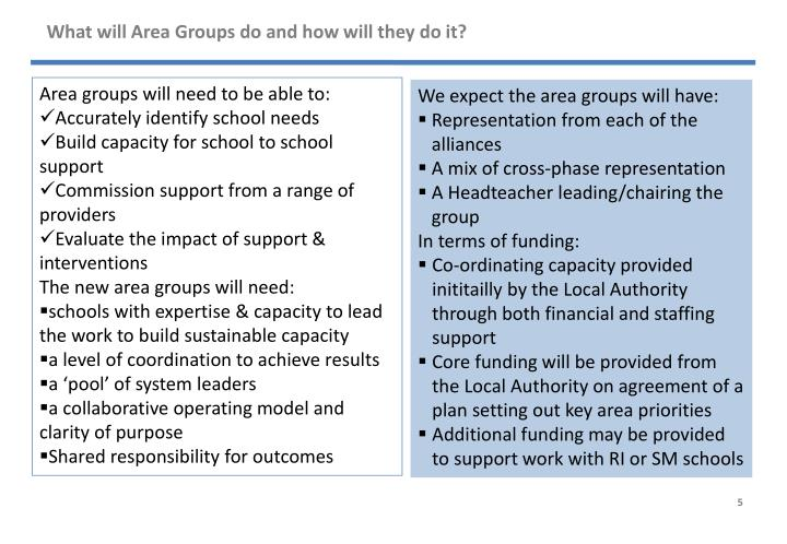 What will Area Groups do and how will they do it?
