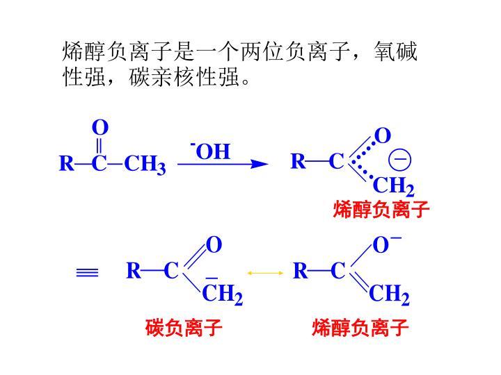 烯醇负离子