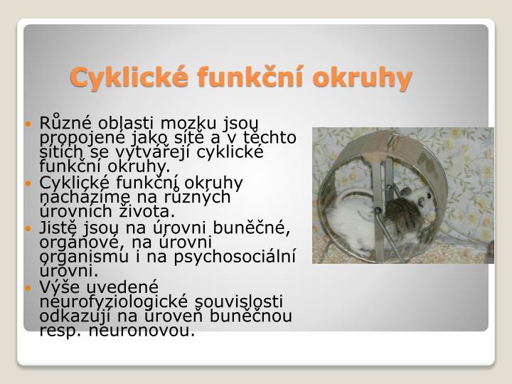 Cyklické funkční okruhy