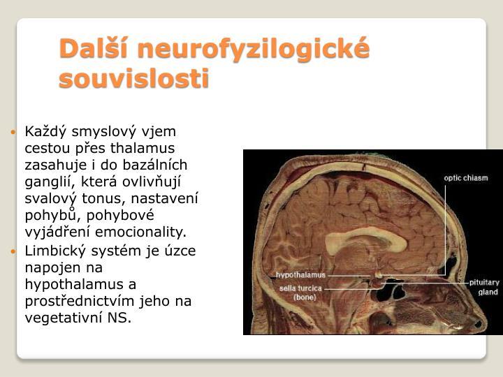 Další neurofyzilogické souvislosti