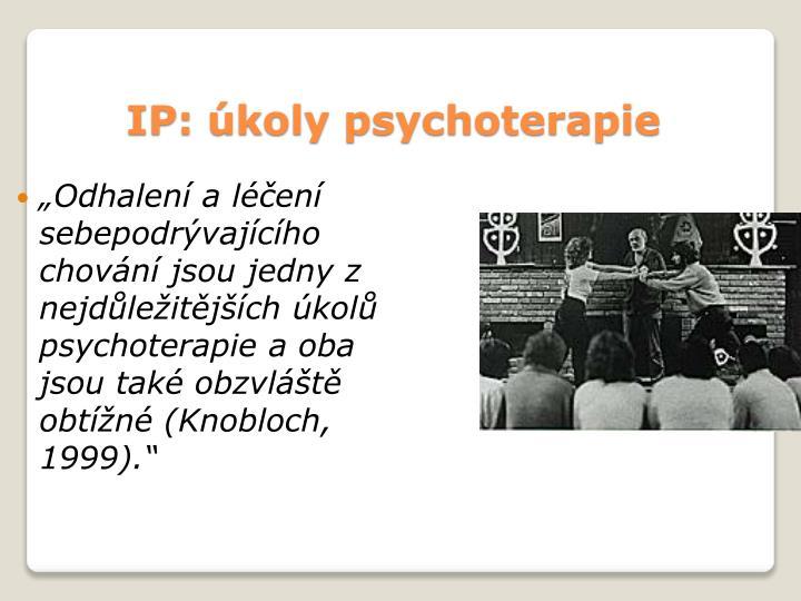 IP: úkoly psychoterapie