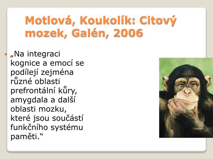 Motlová, Koukolík: Citový mozek, Galén, 2006