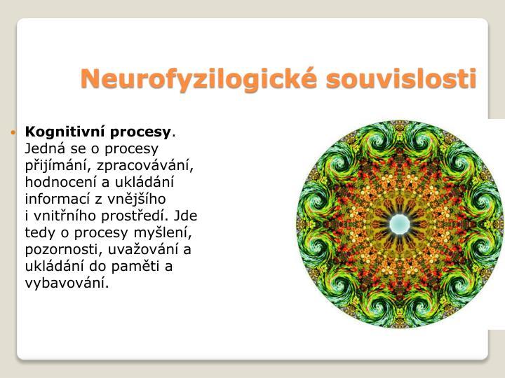 Neurofyzilogické souvislosti