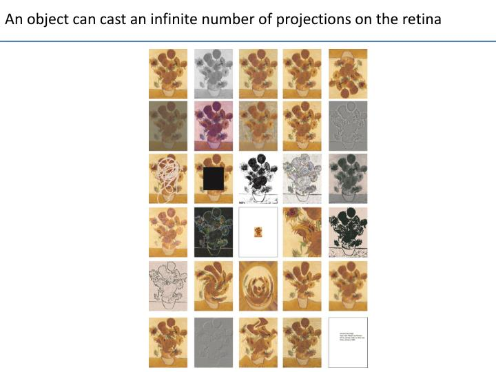 An object can cast an infinite number of projections on the retina