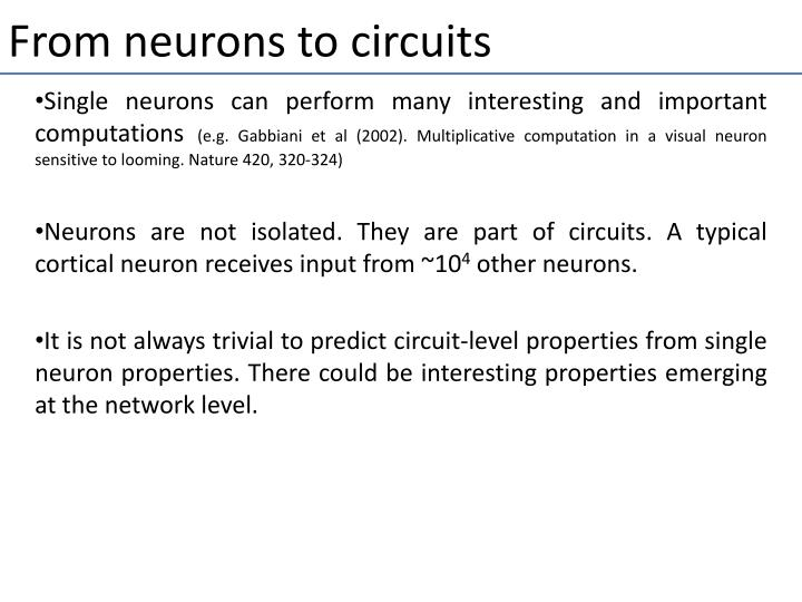 From neurons to circuits