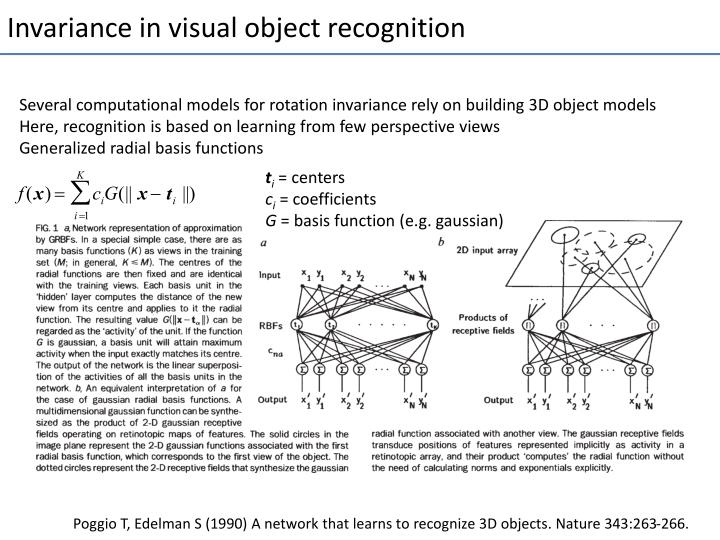 Invariance in visual object recognition