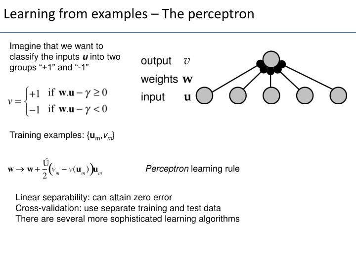 Learning from examples – The perceptron
