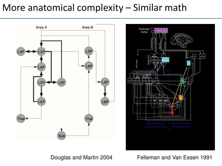 More anatomical complexity – Similar math
