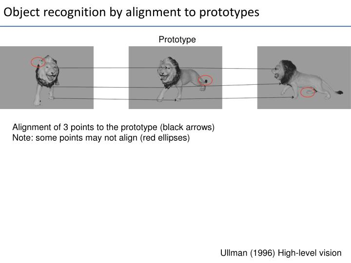 Object recognition by alignment to prototypes