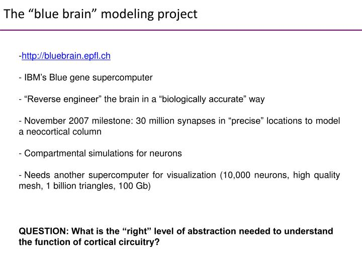 """The """"blue brain"""" modeling project"""