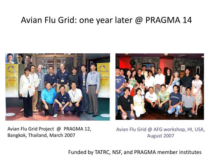Avian Flu Grid: one year later @ PRAGMA 14
