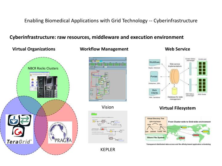 Enabling Biomedical Applications with Grid Technology -- Cyberinfrastructure