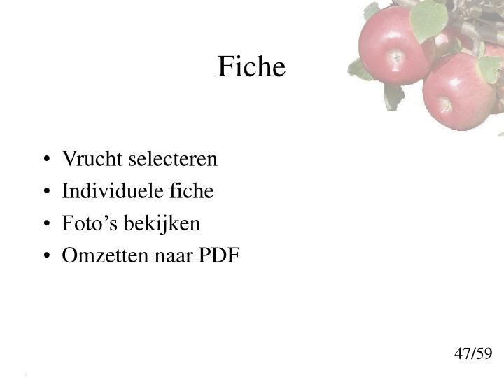 Fiche