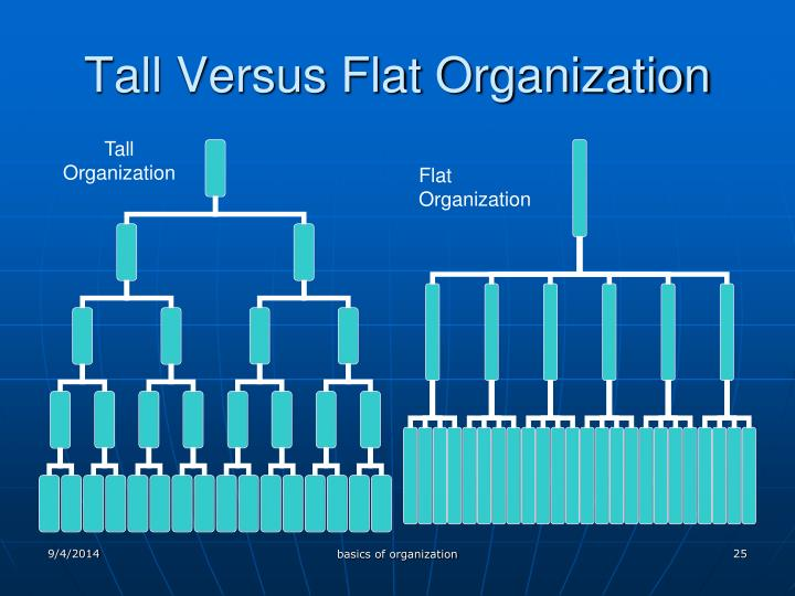 Tall Versus Flat Organization