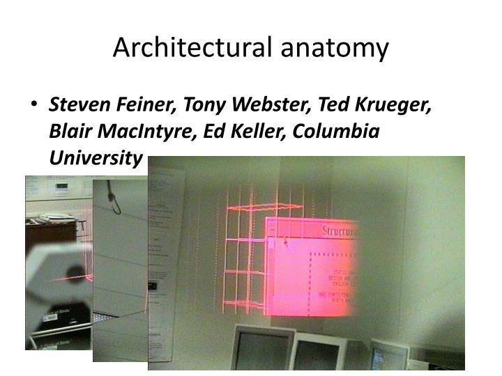 Architectural anatomy