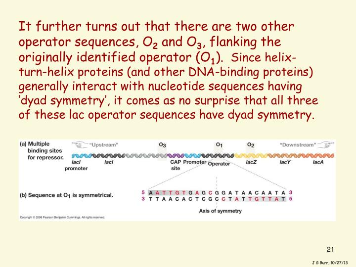 It further turns out that there are two other operator sequences, O