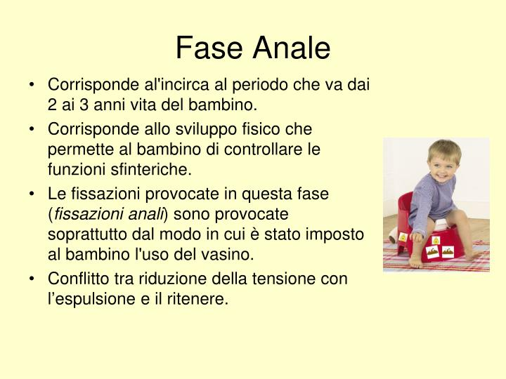 Fase Anale