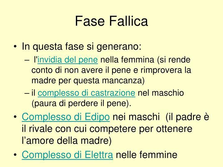 Fase Fallica