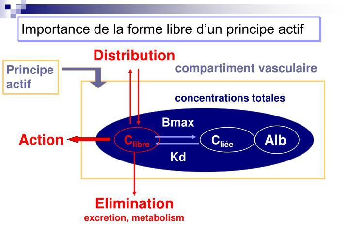 Importance de la forme libre d'un principe actif