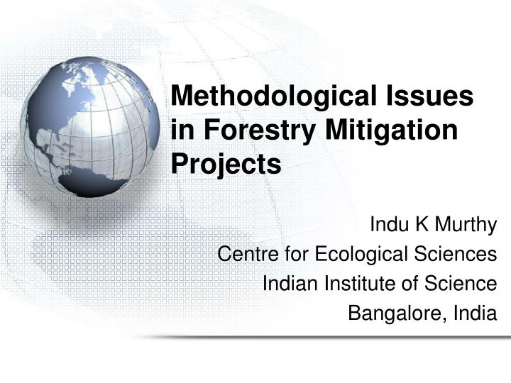 Methodological issues in forestry mitigation projects