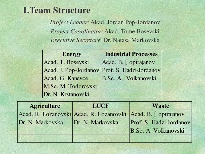 1.Team Structure
