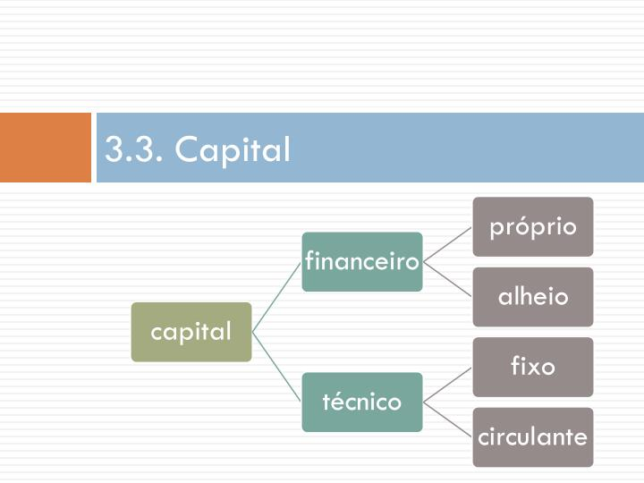 3.3. Capital