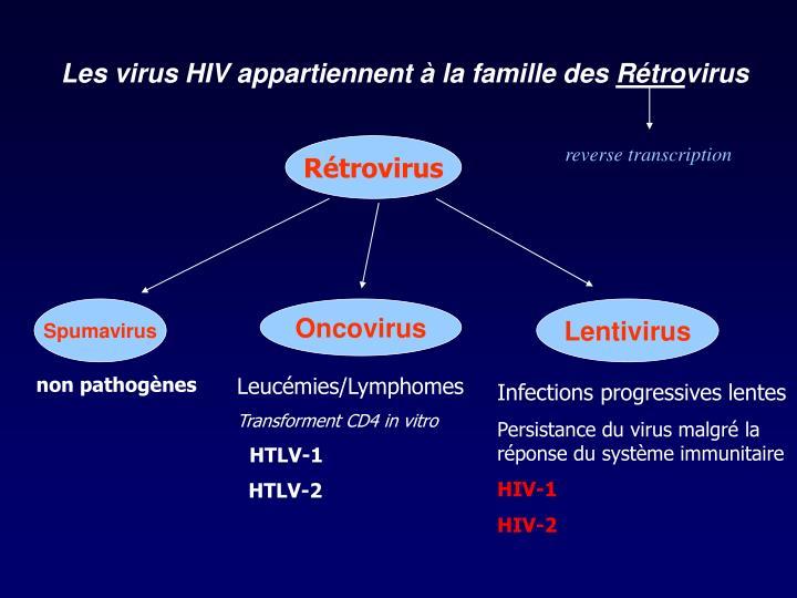 Les virus HIV appartiennent à la famille des