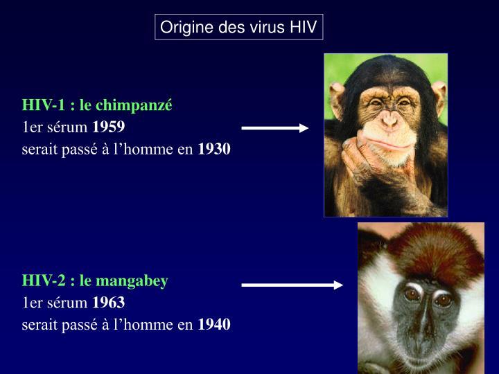 Origine des virus HIV