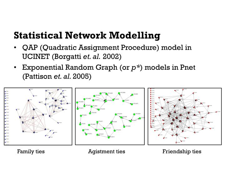 Statistical Network Modelling