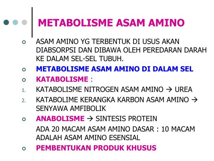 METABOLISME PROTEIN.