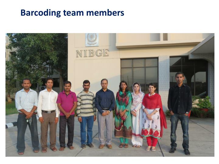 Barcoding team members