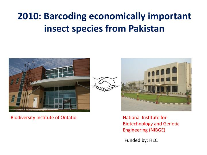 2010: Barcoding economically important insect species from Pakistan