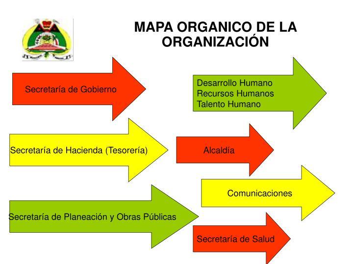 MAPA ORGANICO DE LA ORGANIZACIÓN