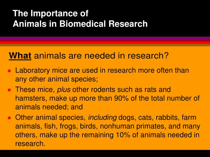 use of animals in biomedical research essay