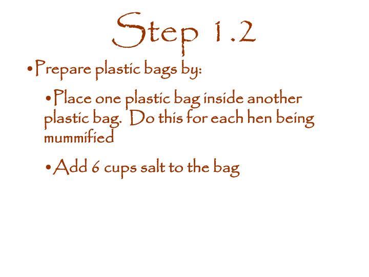 Step 1.2