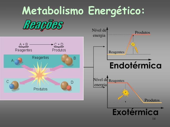 Metabolismo Energético: