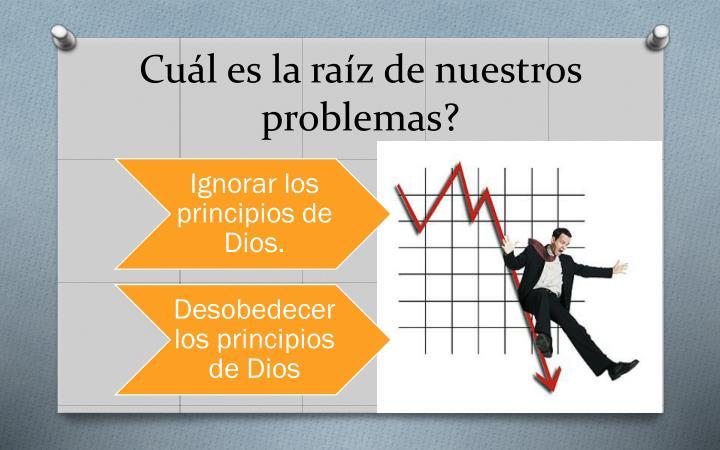 Cuál es la raíz de nuestros problemas?