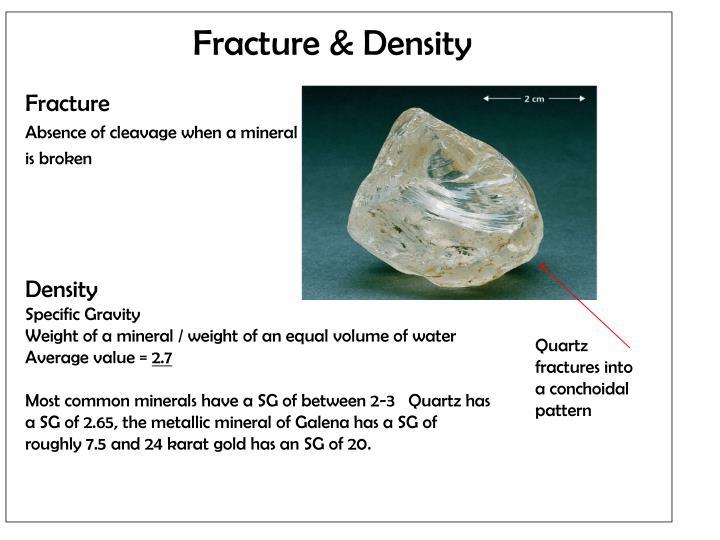 Fracture & Density