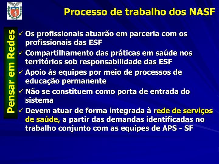 Os profissionais atuarão em parceria com os profissionais das ESF