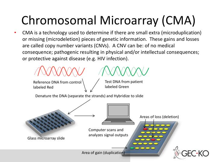 Chromosomal Microarray (CMA)